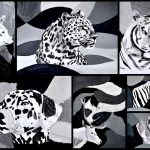 Animals in black & white